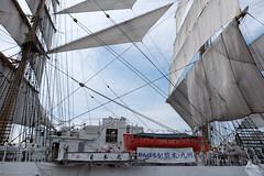 Sail drill 09 : Nipponmaru Japan (Colorful-wind) Tags: light shadow white japan port ship may fujifilm fukuoka lightandshadow kumamoto sailingship mojiko nipponmaru 2016 kitakyusyu moji xti saildrill