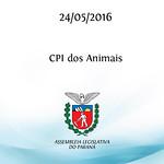 CPI dos Animais 24/05/2016