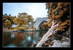 Brig o' Balgownie (Gary Watt) Tags: bridge water river scotland aberdeen cobbles bridgeofdon brigobalgownie