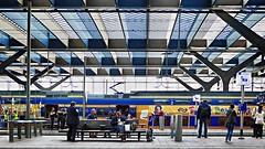 Station Centraal Rotterdam / (jo.misere) Tags: blue people station yellow rotterdam blauw trains geel centraal mensen treinen