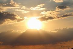 Sonnenuntergang (Klaus R. aus O.) Tags: sunset sky sun tree field clouds sonnenuntergang outdoor feld himmel wolke wolken farmland dämmerung landschaft sonne baum acker steigerwald oberschwappach