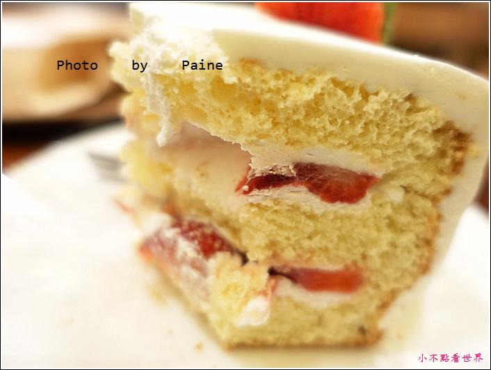 弘大peony cake (23).JPG