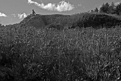 Katherine Duncan Aimone, behind Pulpit Rock, Monhegan, Maine, Nikon D40, nikon nikkor 55mm f/3.5, 10.5.14, version 2 (steve aimone) Tags: blackandwhite texture monochrome clouds landscape maine monochromatic textures grasses monhegan pulpitrock grays monheganisland primelens nikond40 nikonprime nikonnikkor55mmf35 katherineaimone