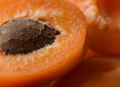Sweet as an Apricot (PhotosbyDi) Tags: orange fruit apricot nikond600 008365 006100 macromondays tamronf2890mmmacrolens
