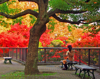 A Japanese girl in Fuchu central park