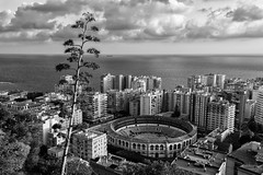 Malaga in Black and White (virtualwayfarer) Tags: street city travel winter urban blackandwhite bw architecture canon photography design photo blackwhite fight spain europe open air exploring january culture streetphotography places bull andalucia historic colosseum entertainment traveling february malaga cultural bullring travelblog bullfighting 600d southernspain andelucia travelblogger visitspain gotravel