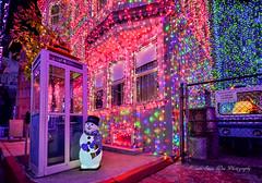 Hollywood Studios (wdwSteve) Tags: christmas nikon disneyworld hollywood studios 1020mm