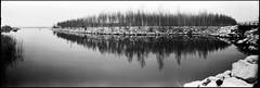 Green Islet (Foide) Tags: trees panorama snow reflections stones pinhole 120film islet 617 smallisland blackwhitephotos filmfilmforever f233 realitysosubtle rss141