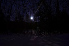 Snowy Winter Woods Full Moon at Night by sonstroem, on Flickr