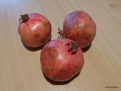 Granatapfel oder (Punica granatum) (HITSCHKO) Tags: obst grenadine punica lythraceae nutzpflanze punicagranatum granatäpfel granatapfel myrtales weiderichgewächse myrtenartige kultpflanze