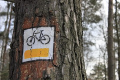 Freedom (Magryciak) Tags: trip travel winter summer lake colour tree water bike sign canon landscape eos europe dad poland 2014