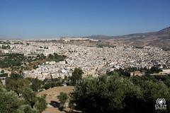 Panorama di Fes da Borj Sud (andrea.prave) Tags: morocco fez maroc marocco medina fes  almamlaka   visitmorocco almaghribiyya tourdelmarocco