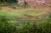 Í Selvogi (saraella) Tags: color nature iceland ísland reykjanes náttúra selvogur litir krísuvík outdor geothermalarea utandyra hverasvæði