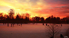 Sunset (iJoydeep) Tags: sunset ice norway nikon skating sandefjord bugrden bugrdsparken d7000