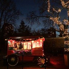 #lpzoo #Chicago #December #2014 (Alissa Hankinson) Tags: blue winter red white holiday chicago colors skyline night festive square lights december warmth squareformat popcorn snacks zoolights 2014 foodcart lpzoo iphoneography instagramapp
