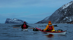 Humpbacks and kayakers in Kattfjord - explored (Snemann) Tags: winter animals coast pentax january kayaking fjords atsea tromsø coastlines troms explored sigma1770 pentaxk5