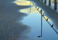 Wet reflection in Manchester (Tony Worrall Foto) Tags: county city uk england reflection wet water lines docks manchester lights stream tour open place northwest grim country north salfordquays visit location rainy lampost area poles northern update salford damp attraction manc gmr welovethenorth 2015tonyworrall