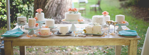 """A gorgeous summer wedding cake table with twelve small cakes. • <a style=""""font-size:0.8em;"""" href=""""http://www.flickr.com/photos/50891271@N03/16347352532/"""" target=""""_blank"""">View on Flickr</a>"""