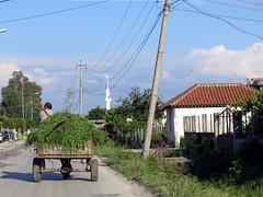 Balkans (YOUGUIE) Tags: balkans albania campagne charrette shqiperia albanie