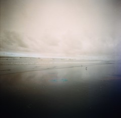 Painted Shore (liquidnight) Tags: birds oregon analog mediumformat seaside lomo lomography turquoise toycamera surreal diana dreamy oregoncoast analogue dianaf vignetting pnw plover dreamscape filmphotography lomochrome lomochrometurquoise lomochrometurquoisexr100400