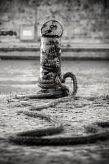 Steady (savolio70) Tags: blackandwhite bw river monocromo fiume rope biancoenero docking steady solido fune ormeggio savolio