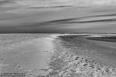 Norfolk_DSC5553 (Nick Woods Photography) Tags: blackandwhite bw beach mono blackwhite sand norfolk shingle sands sanddunes sandbank sandybeach hunstanton beachscape oldhunstanton bwimage norfolkcoast shinglebank monoimage sandandshinglebank