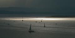 Navegando en aguas plateadas (dialexis20) Tags: verano2012