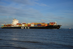 MSC Tamara (DST_7039) (larry_antwerp) Tags: ship vessel container schelde  schip        msctamara 9351579