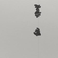 Mirar esperando encontrar... Gracias por las correcciones @anawu.photo , al final si encontramos algo ;) #bnw #b&w #byn #streetphotography #perspective #city #tbt #afternoon #minimal #noir #black #blackandwhite #bnw_life #shoeporn #shoe #shooting (Ivalethia) Tags: bnwlife blackandwhite noir afternoon shoe black city perspective shoeporn tbt streetphotography bnw b shooting minimal byn