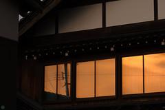 20160618-DS7_6617.jpg (d3_plus) Tags: street sunset sky plant mountains nature field japan nikon scenery dusk daily ragnarok   streetphoto 28105mmf3545d toyama nikkor ricefield     dailyphoto  riceplant   28105    28105mm   zoomlense       28105mmf3545 toyamapref d700 281053545 nikond700  aiafzoomnikkor28105mmf3545d  28105mmf3545af sankyovillage aiafnikkor28105mmf3545d