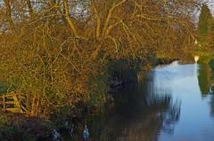 1053-40L (Lozarithm) Tags: landscape derbyshire canals willington k50 treesshrubs trentmersey 55300 hdpda55300mmf458edwr