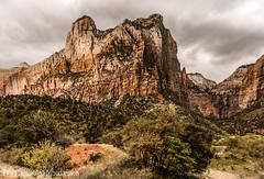 ZION (PHOTOGRAPHY|bydamanti) Tags: mountains utah unitedstates hurricane zionnationalpark nationalparks canyons americasparksfav
