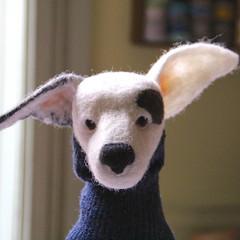 autumn dog 4 (swig - filz felt feutre) Tags: dog chien wool felt hund beast jackrussel swig laine filz wolle feutre wetfelted filztier nassfilzen feltedanimal animalenfeutre