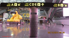 Hamad International Airport - State of Qatar (Feras.Qadoura1) Tags: city airport state international hamad doha qatar       othh