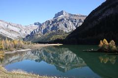 presqu' ile dore (luka116) Tags: berg montagne automne schweiz switzerland suisse swiss lac svizzera foret moutain octobre montagnes vaud 2014 lesdiablerets derborence