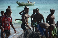 Fishermen (andrejustinolopes) Tags: africa fishing artesanal pesca pescador faina moçambique toil