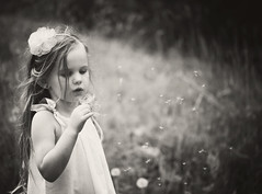 wish (Judy Signoriello) Tags: portrait blackandwhite child dream dandelion wish