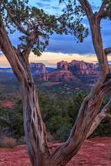 Red Rock (davecurry8) Tags: arizona sedona redrock cathedralrock