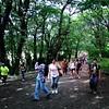 Great North Wood walk (Daniel James Greenwood) Tags: mobilephone mobilephonephotos instagram instagramphotography nokialumia