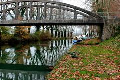 Pont de CAUMONT/GARONNE (Les photos de LN) Tags: nature automne canal bateaux rivire arbres pont miroir garonne reflets berges fleuve lotetgaronne pniches platanes feuillesmortes caumontgaronne