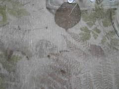 geranium herbe à robert sur tshirt