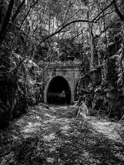 (bigboysdad) Tags: abandoned landscape australia tunnel newsouthwales 24mm 12mm lilyvale