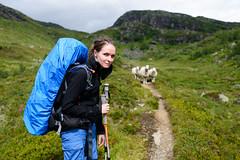 our path was baaarred (sunside) Tags: sarah norwegen hordaland hardangervidda