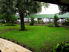 Tropical downpour!!! (mothclark62) Tags: park costa storm america central rica lodge falling national american latin tropical raining pour tropics rainfall pouring rican tortuguero downpour torrential mawamba