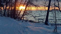 December afternoon sun on the seashore (Särkiniemi, Lauttasaari, Helsinki, 20141226) (RainoL) Tags: winter sea snow sunshine finland geotagged helsinki december balticsea helsingfors fin seashore lauttasaari 2014 uusimaa nyland drumsö särkiniemi mörtnäs fz200 201412 särkiniemenpuisto mörtnäsparken 20141226 geo:lat=6014637330 geo:lon=2487252288