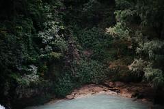 el chiflón (tuli nishimura) Tags: mexico chiapas cascadaselchiflón elchiflón