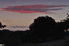 Venezuela sunrise on the backwaters Los Llanos (yaro del fuego) Tags: sunrise venezuela backwaters losllanos