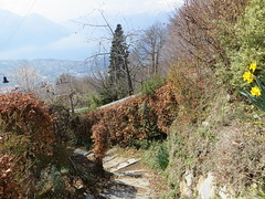2016-032946 (bubbahop) Tags: switzerland hike locarno 2016 cardada europetrip33