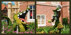 MY WHAT BIG TEETH  YOU HAVE (Visual Images1) Tags: two diptych topiary 6ws disney crocodile captainhook picmonkey