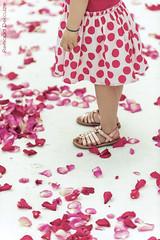 """""""Les petits pois sont rouges"""" (Renaud DELCUZE) Tags: wedding france fleur rose rouge marseille jupe provence mariage fille blanc sud photographe crmonie petales laque delcuze"""